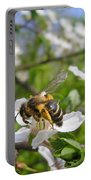 Bee On Flower On Tree Branch Portable Battery Charger