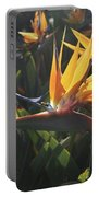 Bee Resting On The Petals Of A Bird Of Paradise  Portable Battery Charger