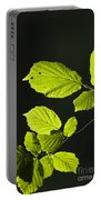Beech Twig Detail Portable Battery Charger