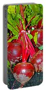 Beets Portable Battery Charger