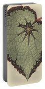 Begonia Rex, Variety Isis Portable Battery Charger
