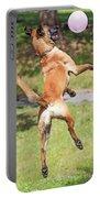 Belgian Shepherd Dog Portable Battery Charger