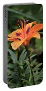 Bellevue Botanical Garden Tiger Lilly 6398 Portable Battery Charger