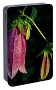 Bellflower In Early Morning Rising Sun Portable Battery Charger