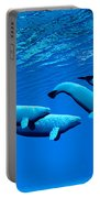 Beluga Whale Pod Portable Battery Charger