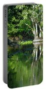 Bend Of The Ocklawaha River Portable Battery Charger