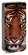 Bengal Tiger - 2 Portable Battery Charger