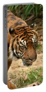 Bengal Tiger II Portable Battery Charger