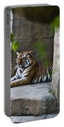 Bengal Tiger Resting Portable Battery Charger