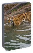 Bengal Tiger Wading Stream Portable Battery Charger