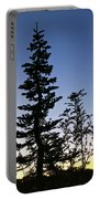 Bent Conifer Portable Battery Charger
