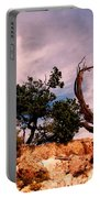 Bent The Grand Canyon Portable Battery Charger