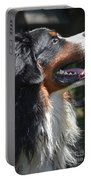 Bernese Mountain Dog Basking In The Sunshine Portable Battery Charger