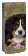 Bernese Mountain Dog Puppy Portable Battery Charger