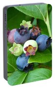 Berries Beautiful Portable Battery Charger