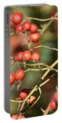 Berry Christmas  Portable Battery Charger