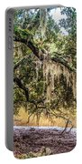 Bethany Cemetery Oaks And Tidal Creek Portable Battery Charger