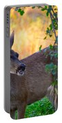 Betty Doe Portable Battery Charger