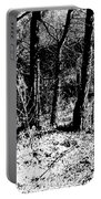 Beyond The Trees Portable Battery Charger