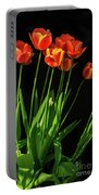 Bicolor Tulips Portable Battery Charger