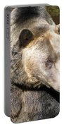 Big Bear Portable Battery Charger