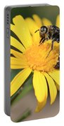 Big Bee On Yellow Daisy Portable Battery Charger