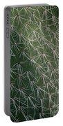 Big Cactus Pins. Close-up Portable Battery Charger