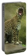 Big Cat, Big Yawn Portable Battery Charger