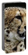 Big Cats 101 Portable Battery Charger