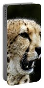 Big Cats 102 Portable Battery Charger