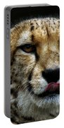 Big Cats 53 Portable Battery Charger