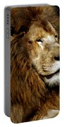 Big Cats 69 Portable Battery Charger