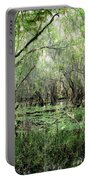 Big Cypress Preserve Portable Battery Charger