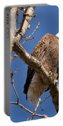 Big Eagle Portable Battery Charger