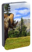Big Horn 3 Portable Battery Charger