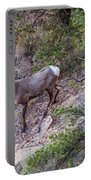 Big Horned Ram Portable Battery Charger