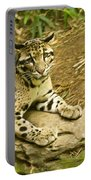 Big Kitty Cat Portable Battery Charger