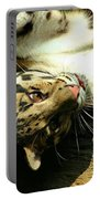 Big Kitty Fun Portable Battery Charger