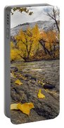 Big Lost Autumn Color Portable Battery Charger