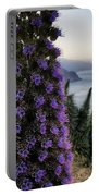 Big Sur Mornings Portable Battery Charger