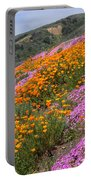Big Sur Spring Portable Battery Charger