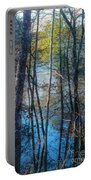 Big Thicket Water Reflection Portable Battery Charger