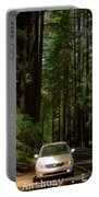 Big Tree Road Portable Battery Charger
