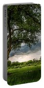 Big Tree - Tall Cottonwood And Storm In Texas Panhandle Portable Battery Charger