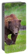Big Ugly Grizzly Boar Claws Portable Battery Charger
