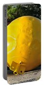 Big Yellow Balls Portable Battery Charger