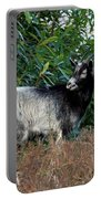 Kerry Mountain Goat Portable Battery Charger