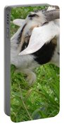 Billy Goat Horns Portable Battery Charger