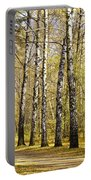 Birch Alley In Autumn Portable Battery Charger