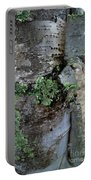 Birch Bark 1 Portable Battery Charger